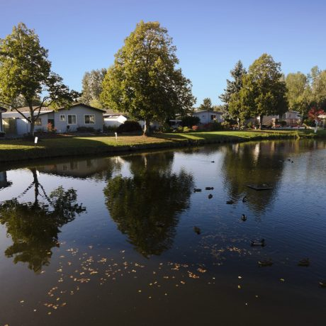 Park Village Pond and homes