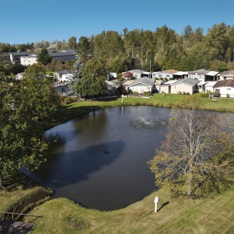 Park Village Aerial homes and pond